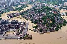 Vì sao Trùng Khánh không mưa lớn nhưng vẫn hứng lũ lịch sử?