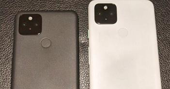 Google Pixel 5: Snapdragon 765G, RAM 8GB lần đầu lộ ảnh thực tế với mặt lưng nhựa nhám
