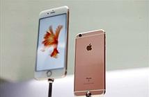 iPhone 6s xách tay sẽ có giá từ 24 triệu đồng