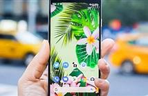 """Pixel 4 cần 6 điều này để """"đạp đổ"""" iPhone 11 và Galaxy S10"""