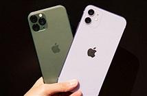 Ưu và nhược điểm lớn trên iPhone 11 và iPhone 11 Pro