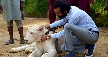 Sư tử trắng, động vật kỳ lạ... sống sang chảnh với đại gia Pakistan