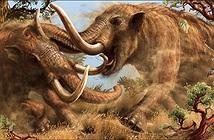 Đi dạo bờ sông, chàng trai phát hiện tàn tích quái thú 10.000 tuổi