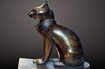 Người Ai Cập cổ đại tôn thờ loài vật nào?