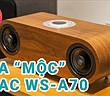 TEAC WS-A70 - Loa di động trang bị driver đồng trục, mộc từ thiết kế đến chất âm.