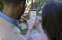 Messenger 4 trình làng, 71% người dùng Facebook hài lòng