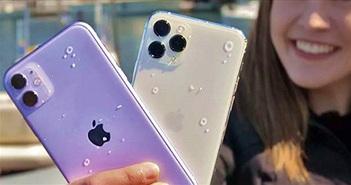 iPhone 11 Pro bị chính Apple hạ thấp tính năng quan trọng này