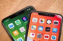 Apple đang thử nghiệm các mẫu iPhone 2020 không tai thỏ