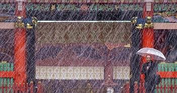 54 năm, tuyết lần đầu rơi vào tháng 11 ở Tokyo