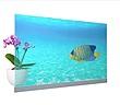 Panasonic ra mắt màn hình OLED trong suốt đầu tiên