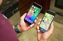 iPhone 6s mini sẽ có màn hình 4 inch, cấu hình giống iPhone 5s