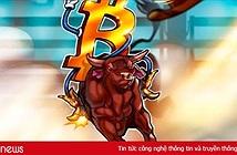 Năm 2018 vẫn là năm thành công của Bitcoin, bất chấp giảm 80%