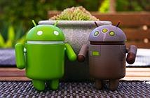 Vì sao Google không vá lỗi đe dọa gần 1 tỷ thiết bị Android?