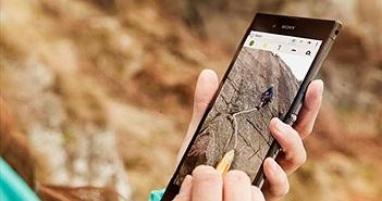 Những mẫu smartphone ấn tượng nhất trong tầm giá 8 triệu đồng