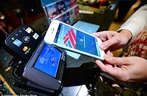 Mục tiêu mới của tin tặc:thanh toán trên mạng di động