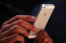iPhone 5se chuẩn bị ra mắt thay iPhone 6c?