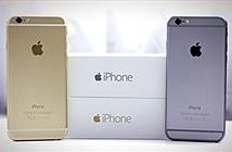 iPhone 6 chính hãng sắp giảm giá 2 triệu