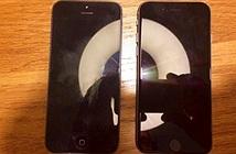 Lộ ảnh thực tế iPhone 5se bản 4 inch