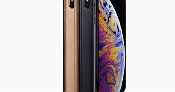 Apple sẽ sớm bỏ hoàn toàn màn hình LCD cho iPhone