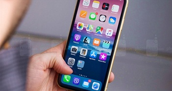 """Nhà cung cấp màn hình iPhone nhận """"trái đắng"""" từ Apple"""