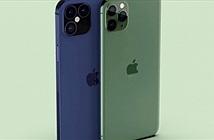 """Hình dáng đại """"gia đình"""" iPhone 12 đang khiến iFan """"hóng"""" hơn bao giờ hết"""