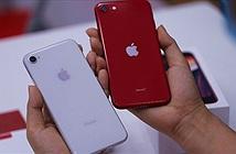 Khám phá bên trong iPhone SE có khác gì iPhone 8?