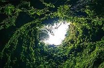 Khám phá ống dung nham cổ đại tại trung tâm Trái đất