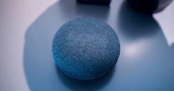 Google Home Mini mới: Thêm Jack 3.5mm, chất lượng loa tốt hơn