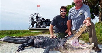 Hãi hùng thợ săn bị ngoạm mất xương tay khi gỡ bẫy cá sấu