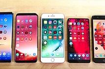 Apple đang sở hữu sát thủ với smartphone Android, mạnh hơn iPhone X