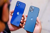iPhone 12 đợt đầu không đủ bán tại Việt Nam