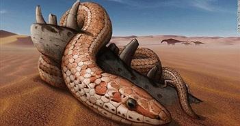 Sửng sốt bí mật của loài rắn cổ hơn 100 triệu năm