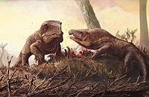Quái vật cổ đại lai giữa cá sấu và rồng komodo