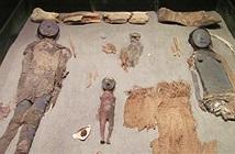 Giới nghiên cứu bất lực nhìn xác ướp cổ nhất thế giới phân hủy