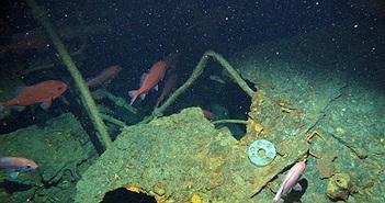 Tàu ngầm đầu tiên của Úc đã được tìm thấy sau hơn 100 năm biến mất