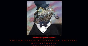 """Website Malaysia Airlines bị nhóm hacker """"Thằn lằn"""" tấn công"""