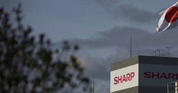 Sharp - Đứa con được nuông chiều thái quá của chính phủ Nhật Bản