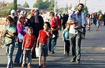 Google tài trợ hơn 5 triệu USD cho người tị nạn