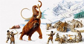 200 năm sau, động vật có vú trên cạn lớn nhất có thể là bò