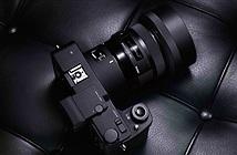 Sigma bán mirrorless sd Quattro giá cực tốt: 18,5 triệu