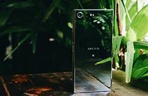 Sony Xperia XZ Premium lên kệ tại FPT Shop