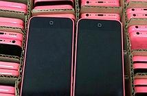 iPhone giá 2-3 triệu đồng tràn ngập thị trường
