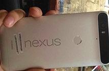 Điện thoại Huawei Nexus lộ ảnh với camera dị