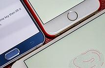 iPhone sẽ chụp ảnh kẻ trộm và lưu lại dấu vân tay khi bị mất cắp?