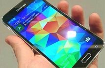 Samsung Galaxy Grand Prime (2016) lộ cấu hình trên GeekBench