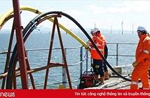 Sự cố cáp quang biển AAG ảnh hưởng thế nào đến người dùng Internet Việt Nam?