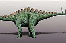 Phát hiện loài khủng long mới ở nơi cực hiếm thấy