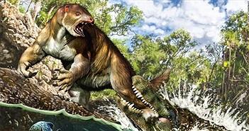 Kinh ngạc loài cá sấu dài bằng toa tàu, nặng chục tấn