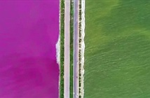 Thủ phạm khiến Biển Chết Trung Quốc đổi màu cầu vồng