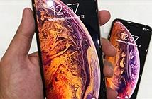 Phát hiện sốc: Pin iPhone Xs và Xs Max thảm bại trước iPhone X
